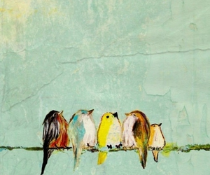 birds, colors, and cute image