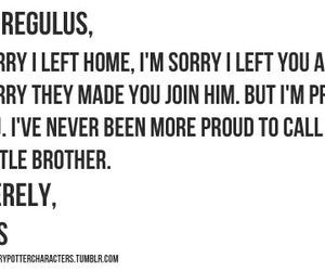 harry potter, proud, and sirius black image