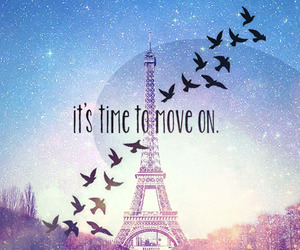 paris, bird, and move on image
