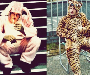 norman reedus, andrew lincoln, and bunny image