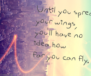 quotes, fly, and wings image