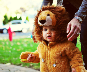 cute, baby, and lion image