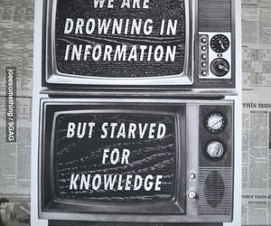 knowledge, information, and quotes image