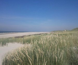 amrum sea germany image