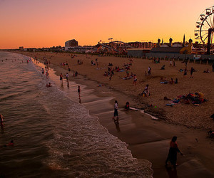 beach, sunset, and photography image