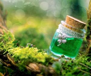 green, magic, and nature image