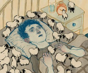 sheep, sleep, and insomnia image