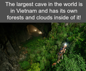 awesome and facts image