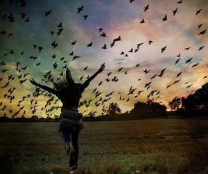 bird, girl, and fly image