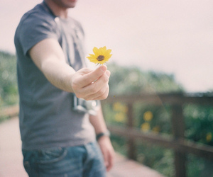 flowers, boy, and cute image