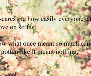 text, flowers, and quote image