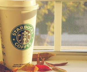 starbucks, coffee, and autumn image