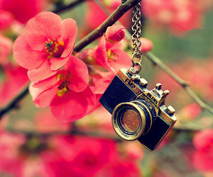 camera, necklace, and fashion image