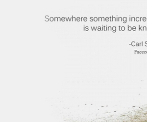 celebrity quotes, quotes facebook cover, and quotes facebook image
