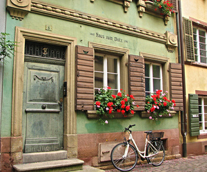 vintage, flowers, and germany image