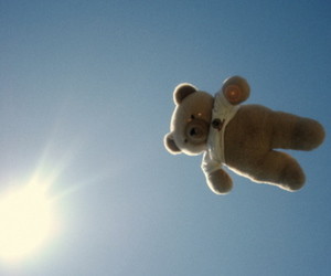 bear, Flying, and light image