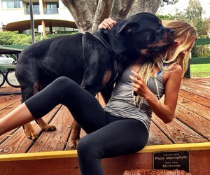 arms, blonde, and dog image