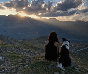 best friends, dog, and photography image