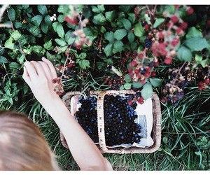 girl, berries, and vintage image