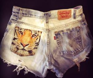 tiger and shorts image