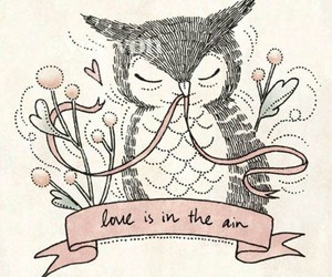owl, love, and illustration image