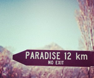 paradise, Dream, and exit image