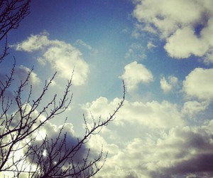 clouds, photography, and tree image
