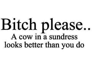 bitch, quote, and cow image