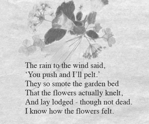 beautiful, poem, and robert frost image