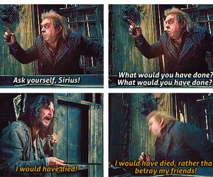 sirius black, harry potter, and friends image