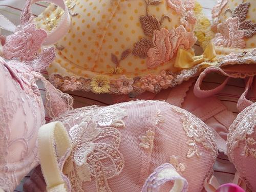 bra, feminine, and girly image