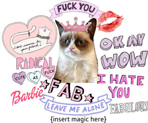 cat, barbie, and funny image