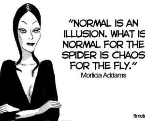 normal, quote, and chaos image
