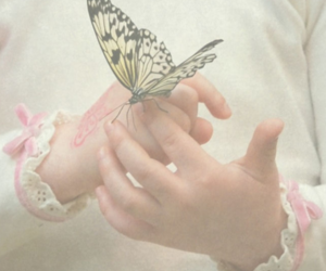 butterfly, child, and hands image