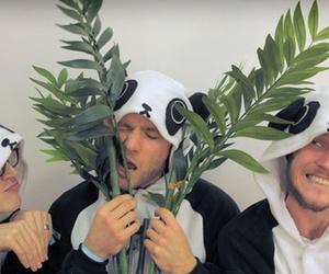 McFly, panda, and cute image