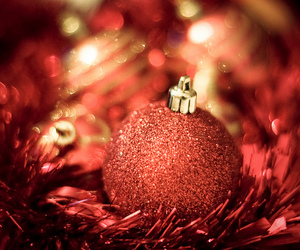 christmas, red, and cute image