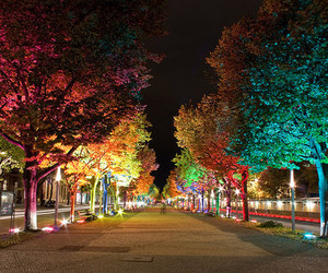 colourful, light, and street image