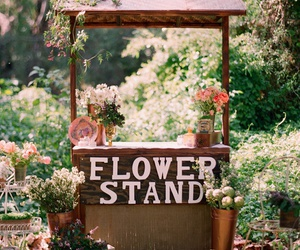 flowers, nature, and stand image