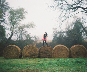 girl, trees, and hay image