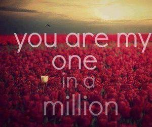 love, million, and one image