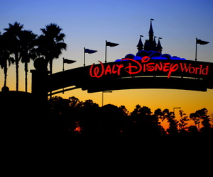 beautiful, disney world, and typography image