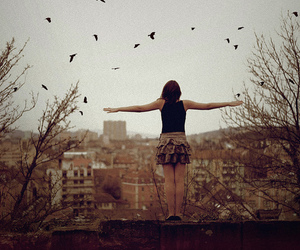 girl, birds, and photography image