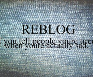 text, reblog, and quote image