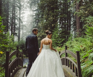 bridge, forest, and wedding image