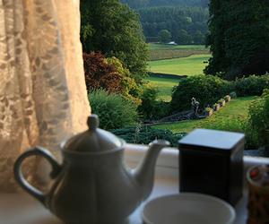 tea, United Kingdom, and cup of tea image