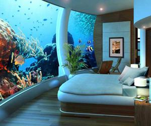 bed, Dream, and room image