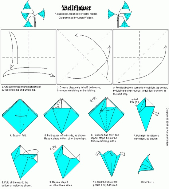 Origami bellflower folding instructions origami instruction mightylinksfo