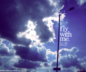 blue, fly, and free image