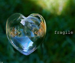 bubble, fragile, and heart image