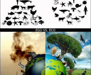 eco, ego, and nature image